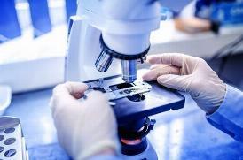 GRAZIE AL DNA SARÀ POSSIBILE SCOPRIRE UN TUMORE PRIMA CHE SI SVILUPPI