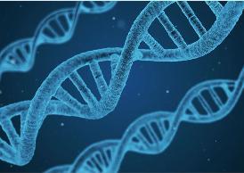 ESSELUNGA E FONDAZIONE TELETHON ALLEATI CONTRO LE MALATTIE GENETICHE